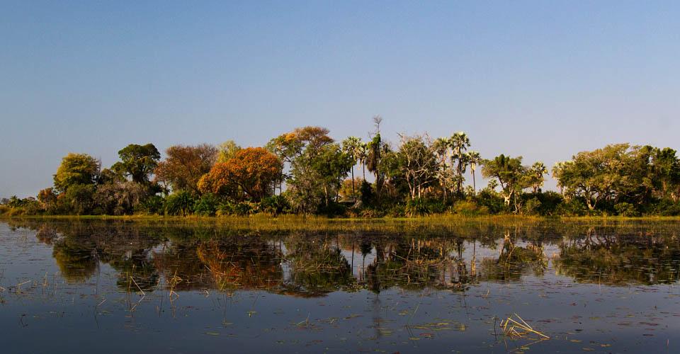 Pelo Island, Okavango Delta, Botswana