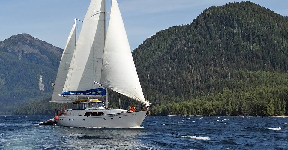 Island Roamer, Princess Royal Channel, British Columbia, Canada