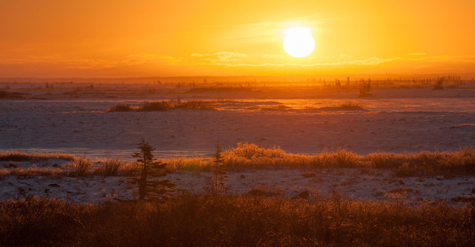 Tundra sunset, Churchill, Manitoba, Canada