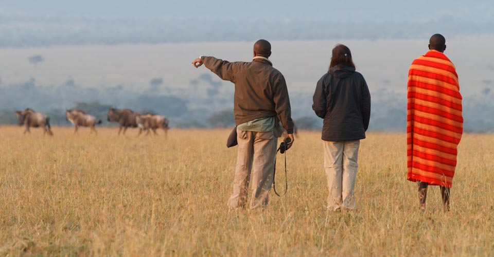 Walking safari, Mara Conservancy, Kenya