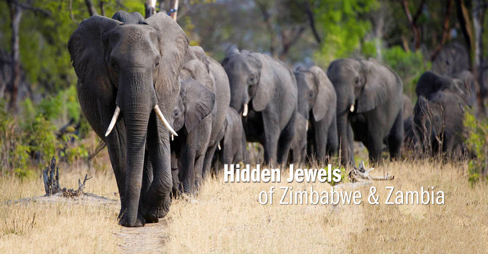 What Are The Natural Resources In Zimbabwe