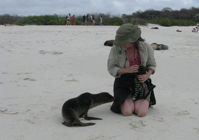 In the Galapagos visiting Hood Island ~ are you my mother?