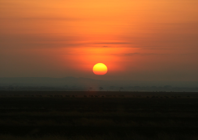 As if on cue, the sunset our last night on safari was perfect! We hope you'll get to see this some day too!