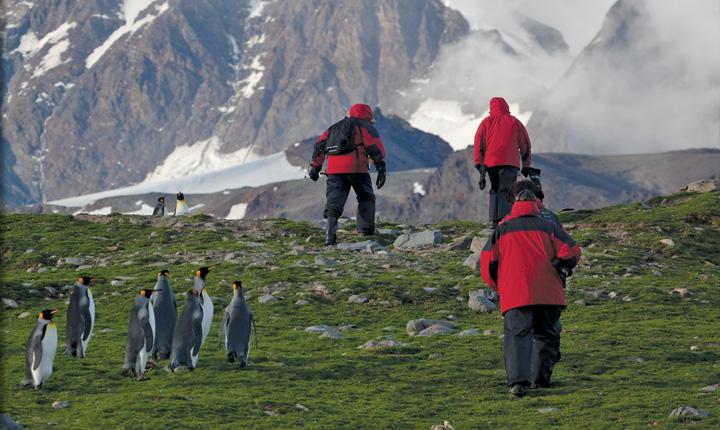 Antarctic Cruise Adventure Cruises